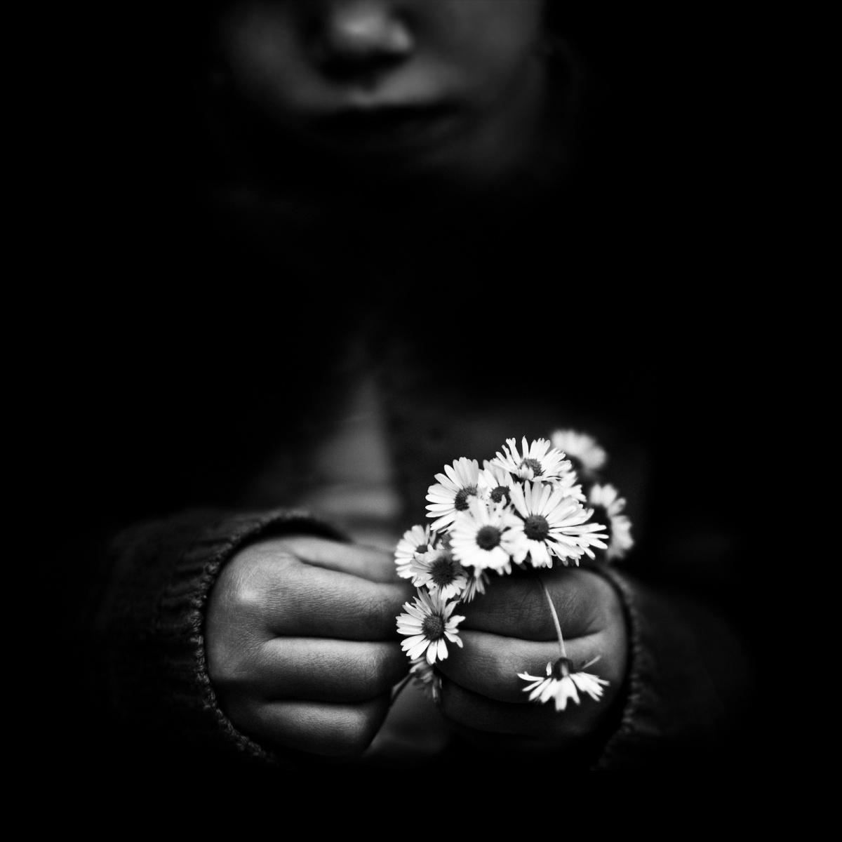 Photo Focus > Benoit Courti